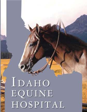Idaho Equine Hospital